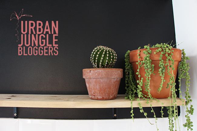 urbanjungle-7