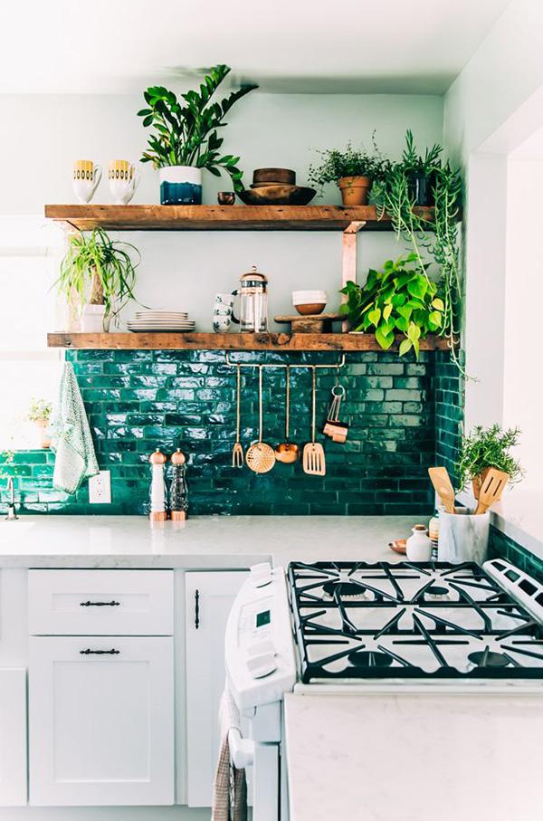déco cuisine plantes