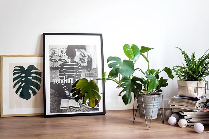 déco kinfolk plantes