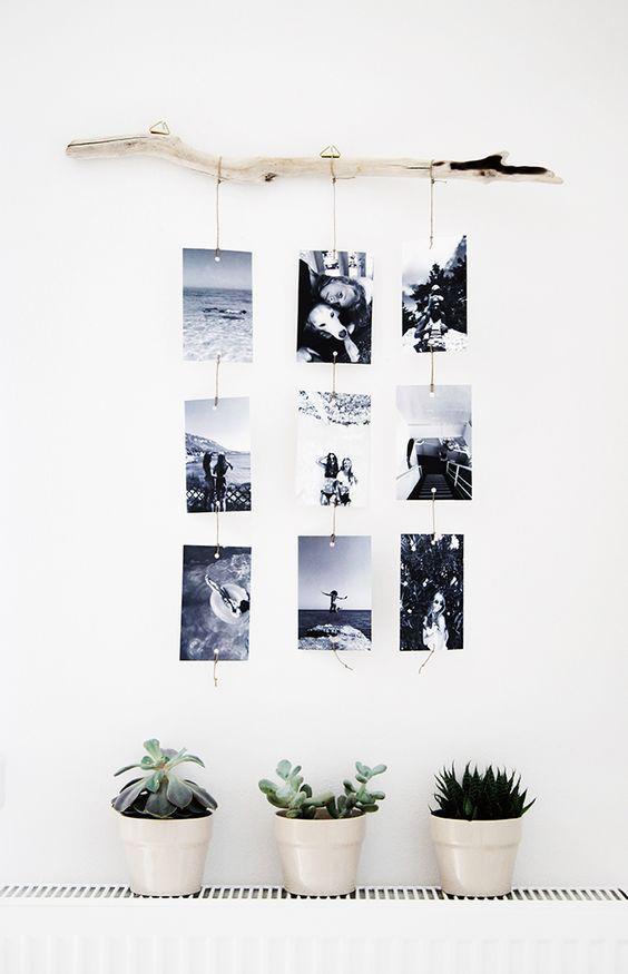 photos déco bois flotté