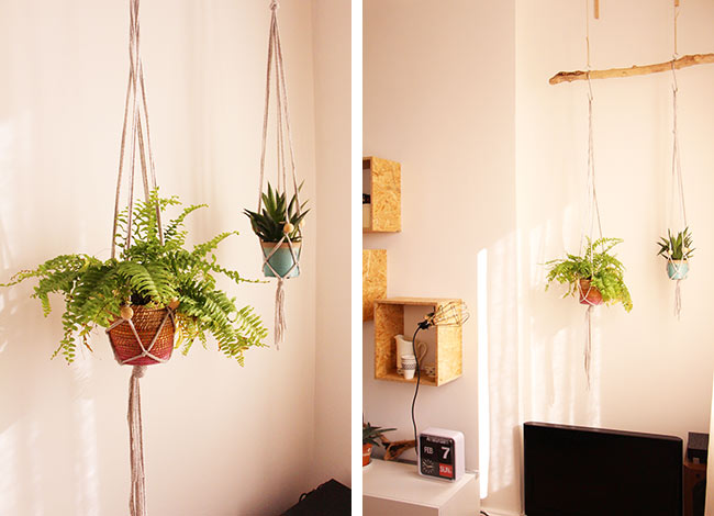 Mes plantes suspendues blueberry home - Comment accrocher un abat jour au plafond ...